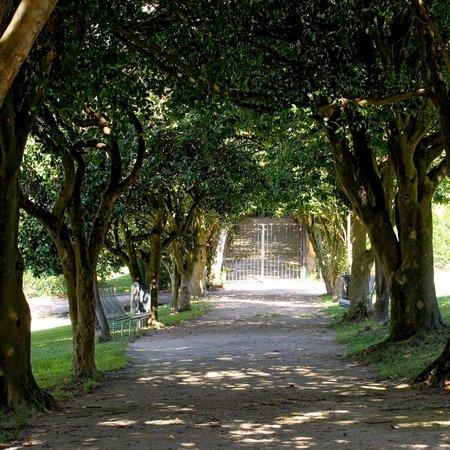 NH Collection Santiago de Compostela: Hotel Views