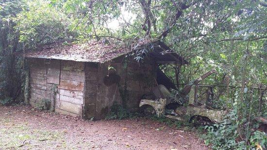 Parque Ceremonial Indigena de Caguana : Casita dentro del parque, bien abajo