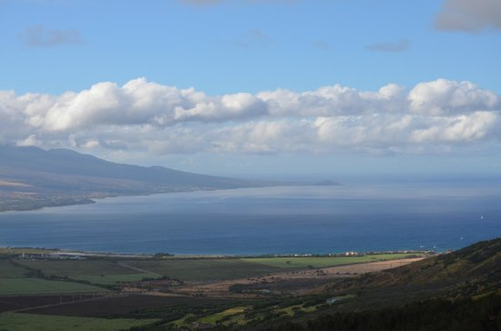 Flyin Hawaiian Zipline: View from one of the towers