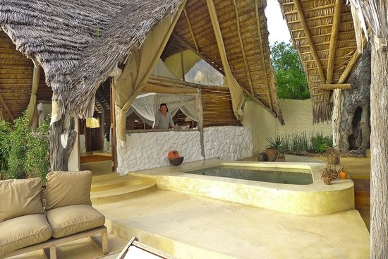 Sand Rivers Selous, Nomad Tanzania: Our suite had a private plunge pool
