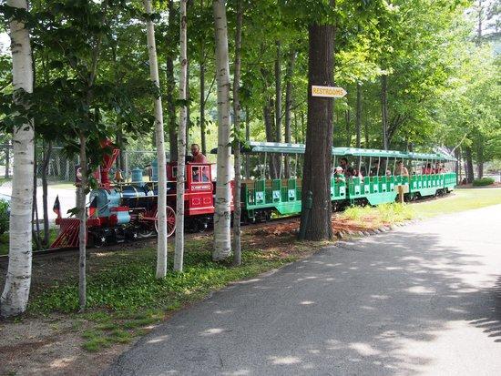 Story Land: Le petit train