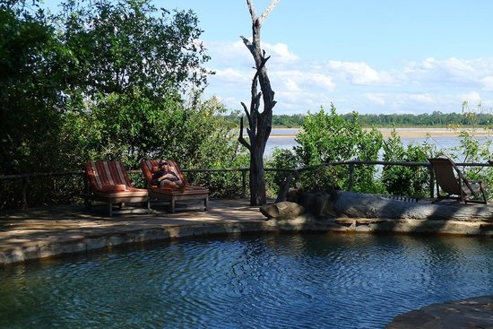 Sand Rivers Selous, Nomad Tanzania: River view fiew from the lodge's pool