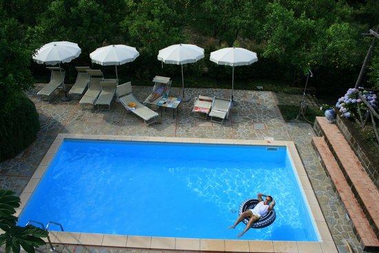 Villa Flavia : lovely pool