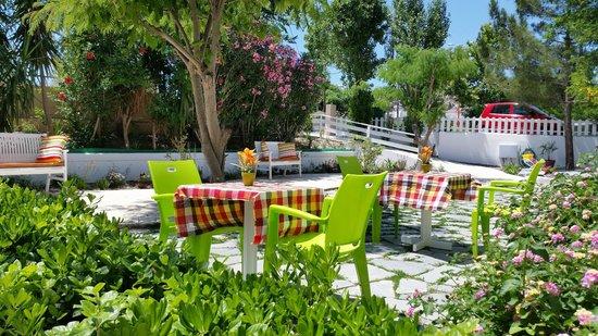 Stavris Studios : Garden