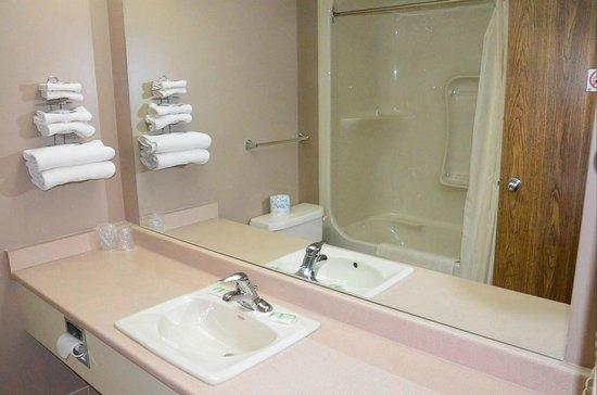 Companion Hotel/Motel: Bathroom