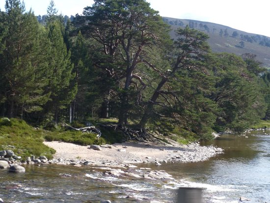 Linn O' Dee: Little beach on the River Dee