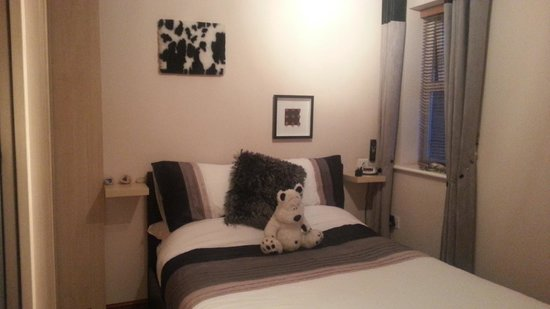 Lanes Guest House: This cuddly bear joined our stay!
