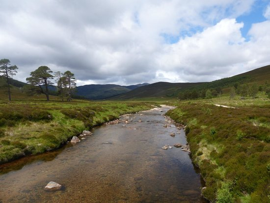 Linn O' Dee: Towards Derry Lodge