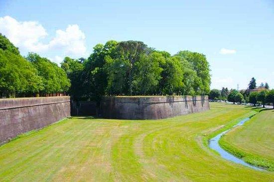 Le mura di Lucca : the impressive Lucca walls