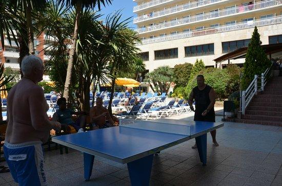 GHT Oasis Park & SPA: Развлечения в отеле