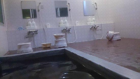 Hotel Shomeikan: 洗い場は3箇所