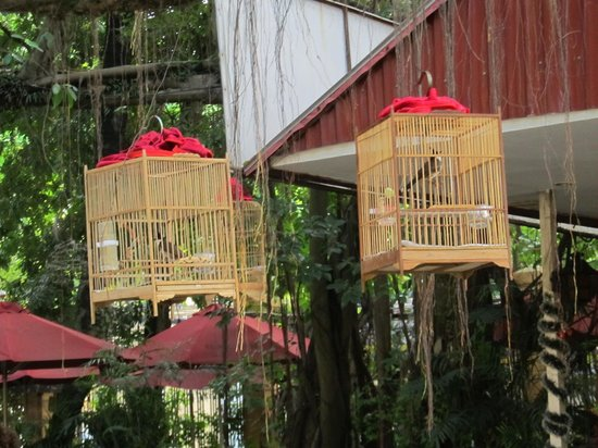 Vietnam National Museum of History: Traditional bird cages with birds