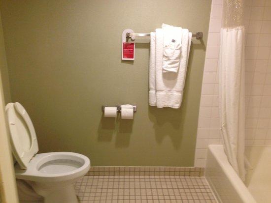 Ramada Plaza Garden Grove/Anaheim South: Bathroom