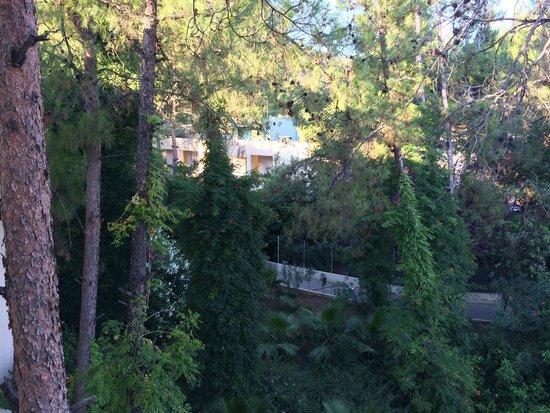 Marmaris Resort & SPA: Вниз под балконом