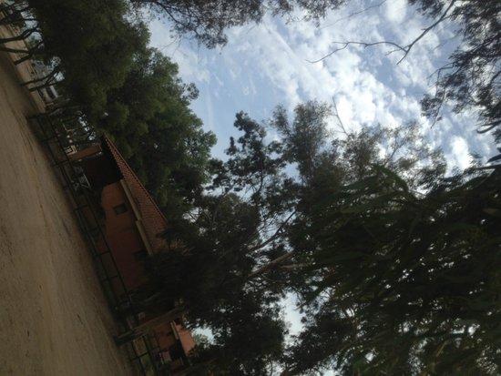 Tiliguerta Camping Village : area esterna bungalow