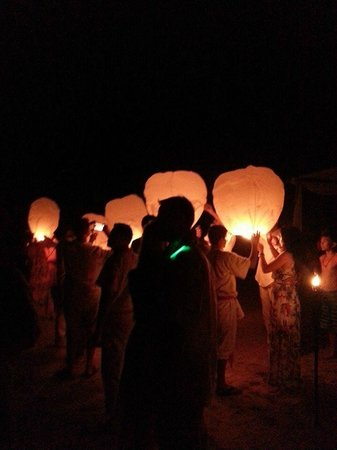 Vallarta Adventures - Las Caletas Beach Hideaway: Sky Lanterns