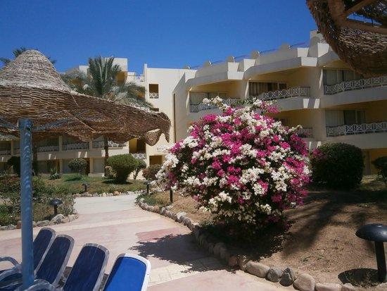 Sultan Beach Hotel: courtyard