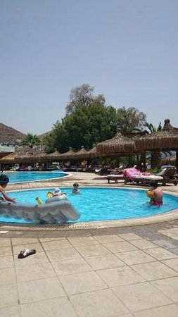 Kadikale Resort : Main Pool