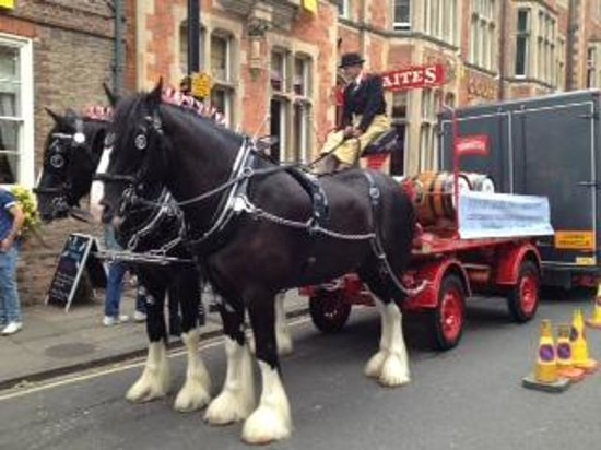 The Judges Lodging : Dray horses from Thwaites Brewery
