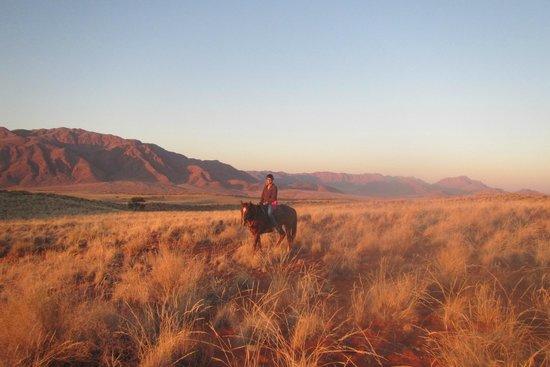 Wolwedans Dunes Lodge: Horse Riding Sundowner