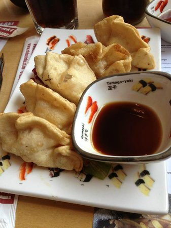 Teri-Aki: Gyoza (fried dumplings)