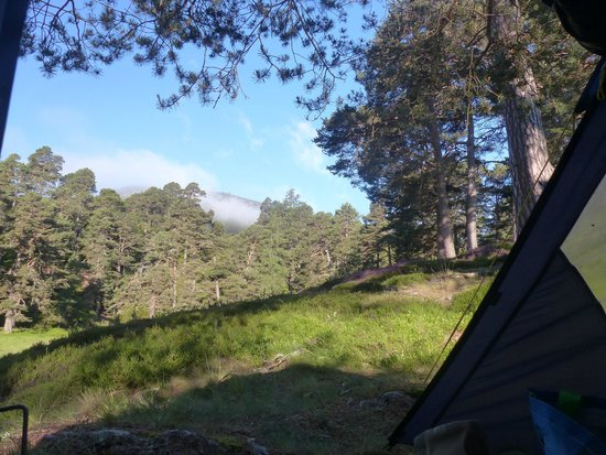 Cairngorms National Park: View from the tent