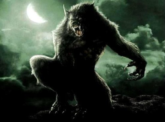 Image result for rougarou