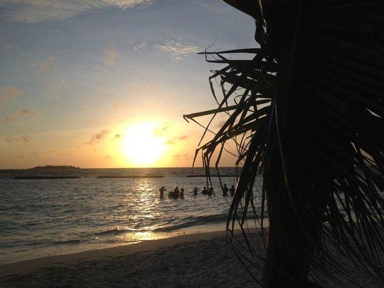 Kurumba Maldives: Wine tasting in the beach