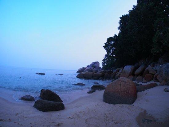 Lone Pine Hotel : Batu Ferringhi Beach