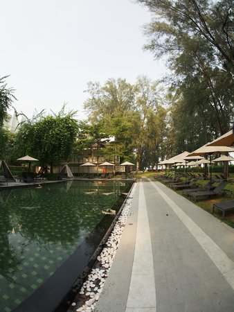 Lone Pine Hotel : Poolside