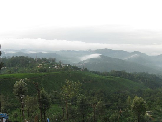 Misty Mountain Resort: View from room