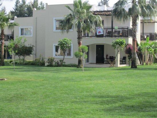 Otium Eco Club Side : Our bungalows