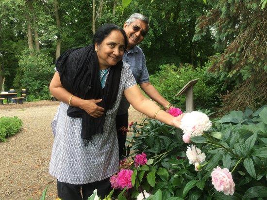 Matthaei Botanical Gardens: FLOWER IN HAND