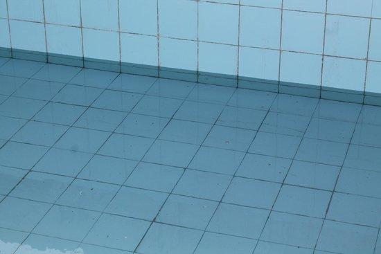 Hotel Bhoomi Residency: Pool