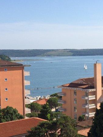 Hotel Mirna - LifeClass Hotels & Spa : Balcone vista mare