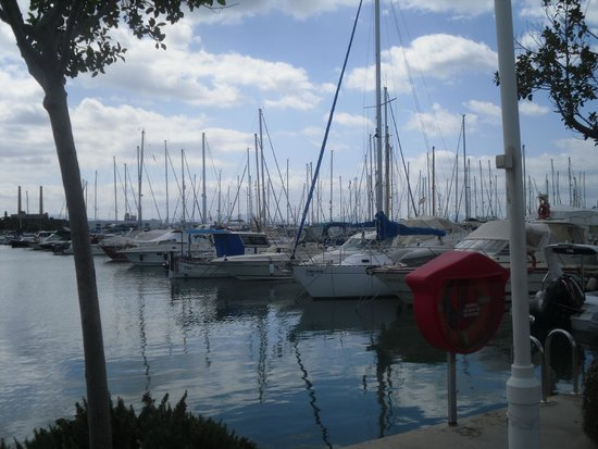 Alcudia Old Town: Port d'Alcudia marina