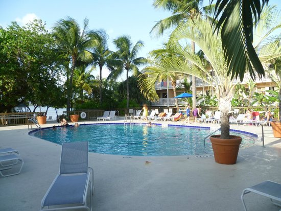 piscina picture of banana bay resort key west key