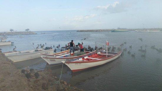 La Posada del Capitan Henry: Pescadores, vista desde la piscina