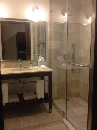 Four Points by Sheraton Puntacana Village: Bathroom