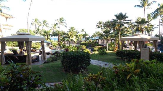 Grand Hyatt Kauai Resort & Spa: The view from room 3099!