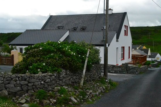 Twin Peaks B&B: Cottages along the road to Doolin town.