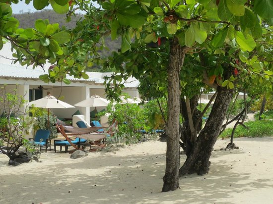 Spice Island Beach Resort: Seagrape Suites on the Beach