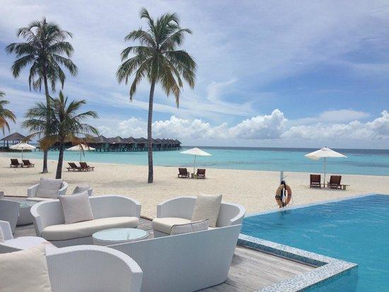 Maafushivaru: view from the pool