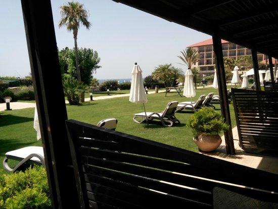 Dan Accadia Hotel Herzliya : צילום מהחצר בחדר גן