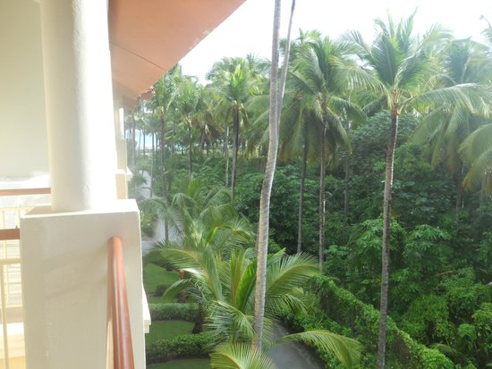 Majestic Elegance Punta Cana: View from our room - you can kind of see the ocean from here