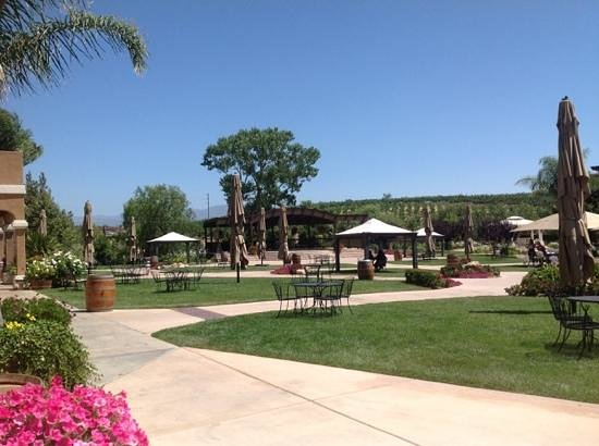 Wilson Creek Winery: gorgeous grounds