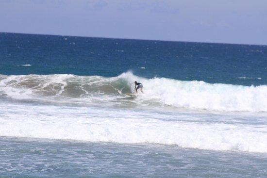 Mariposa Vacation Homes: great surf spot