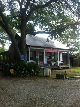 Bayou Cabins: Accueil