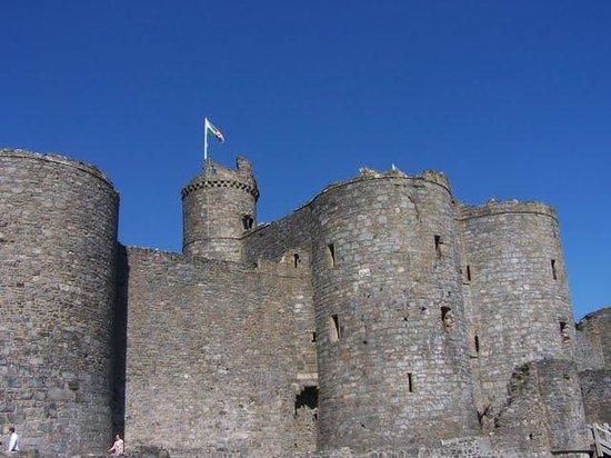 Talybont Bed & Breakfast: Harlech Castle