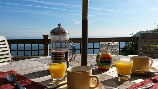 North Walk House: uitzicht tijdens het ontbijt in de tuin
